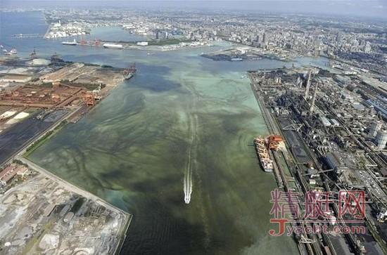 日本东京湾沿岸出现第三次大规模青潮现象