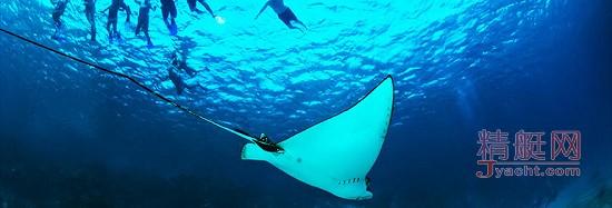 全球十大潜水者朝圣地 沉醉于神秘海底世界