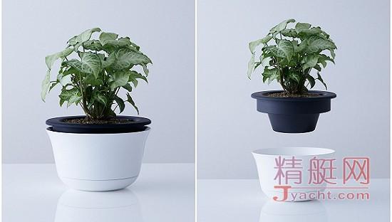 这个花盆可以一秒变头盔在地震中拯救生命