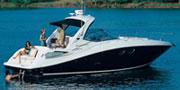 Sea Ray 350 SDA(希瑞)