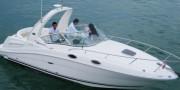 Sea Ray260 运动游艇