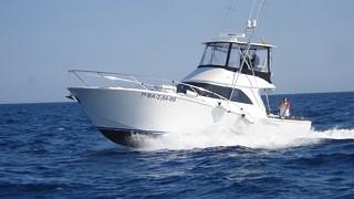 彼得船长42英尺钓鱼艇