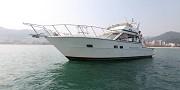 43尺飞桥艇