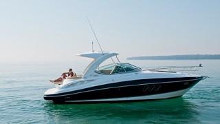 Cruisers yachts 350