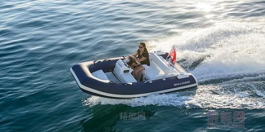 Williams Sport jet 345
